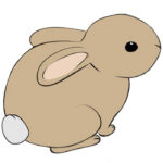 How to Draw a Rabbit Easy for Kids