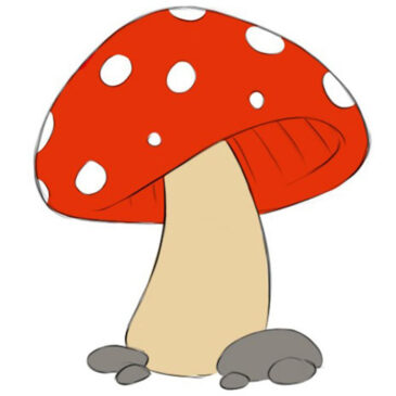 How to Draw a Mushroom for Kids