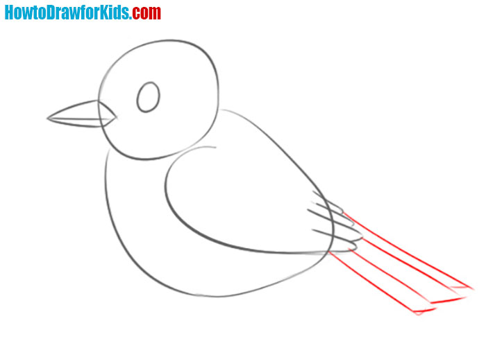 how to draw a sparrow for beginners