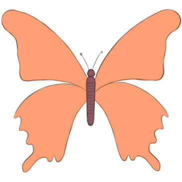 How to Draw a Butterfly Very Easy