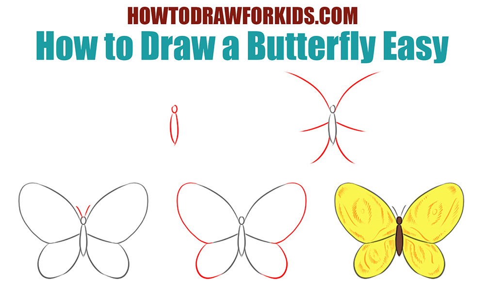 How to draw a butterfly for kids step by step easy