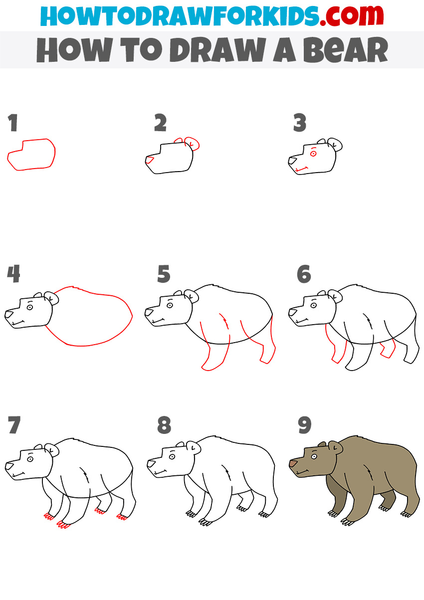 How to draw a bear step by step