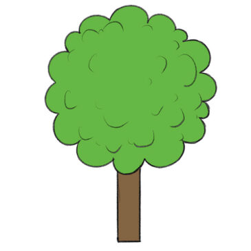 How to Draw a Tree for Kindergarten