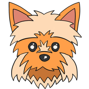 How to Draw a Yorkie Face